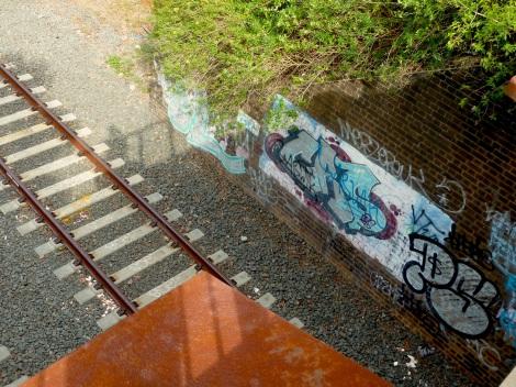 Dulwich Hill- rail