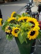 Amsterdam streetside, The Netherlands