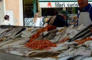 Santa Margherita fish market, Venice, Italy