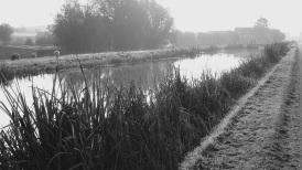 Farm canal