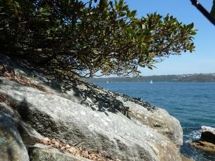Water views, Shark Bay