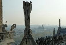 Notre Dame rooftop, Paris