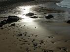 Nobby's Beach, Port Macquarie, Australia