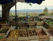 Vegetables with a view
