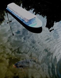 Madurodam- Den Haag