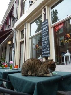 Delft cafe early starter, The Netherlands