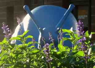 Blue: Morning snail, Sydney Art and About Festival
