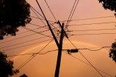 Sydney bushfires