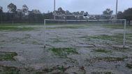 Sydney downpour- no game tomorrow