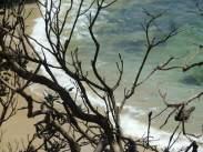Town Beach, Port Macquarie, Australia