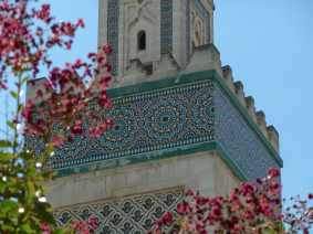 Symmetry- Paris Grand Mosque