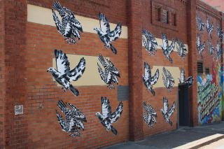 Walls- street art, Newcastle, Australia