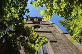 St Phillips church, Sydney