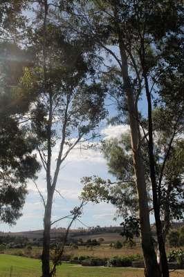 Bathurst, Australia