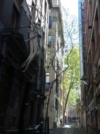 Melbourne-lane view