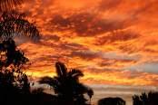 Sydney bushfire sunset